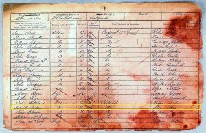 Hudson1851 Census