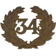 34th Cap Badge