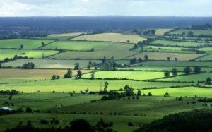 Allen, County Kildare